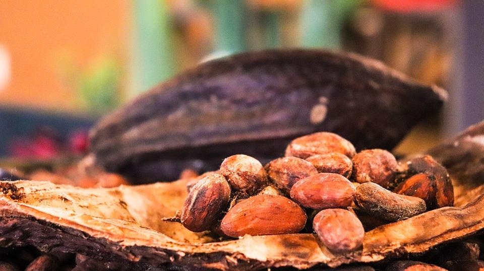 Regresamos. Día Internacional del Chocolate