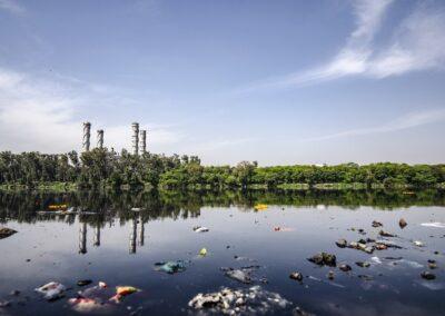 ¿A los químicos les importa la naturaleza?